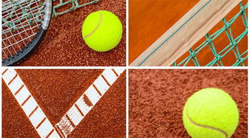 40 Plus Sport & Culture